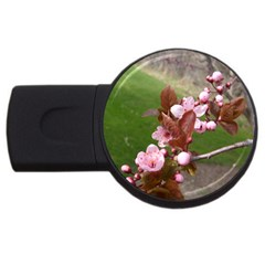 Pink Flowers  USB Flash Drive Round (4 GB)