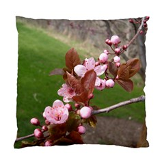 Pink Flowers  Standard Cushion Case (Two Sides)
