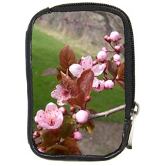 Pink Flowers  Compact Camera Cases