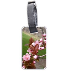 Pink Flowers  Luggage Tags (One Side)