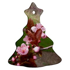 Pink Flowers  Christmas Tree Ornament (Two Sides)