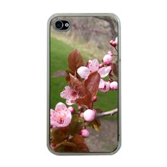 Pink Flowers  Apple iPhone 4 Case (Clear)