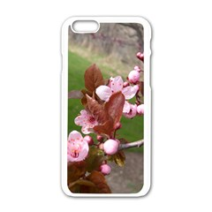 Pink Flowers  Apple iPhone 6/6S White Enamel Case