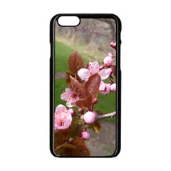 Pink Flowers  Apple iPhone 6/6S Black Enamel Case