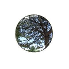 Pine Tree Reaching Hat Clip Ball Marker
