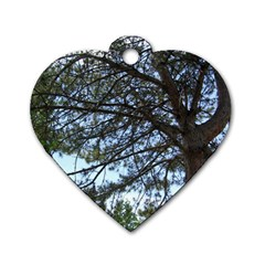 Pine Tree Reaching Dog Tag Heart (One Side)