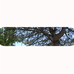 Pine Tree Reaching Large Bar Mats