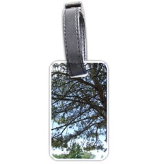 Pine Tree Reaching Luggage Tags (Two Sides)