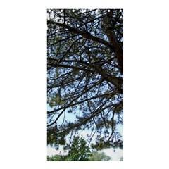 Pine Tree Reaching Shower Curtain 36  X 72  (stall)