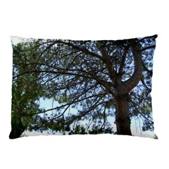 Pine Tree Reaching Pillow Case (Two Sides)
