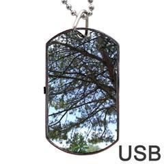 Pine Tree Reaching Dog Tag USB Flash (Two Sides)