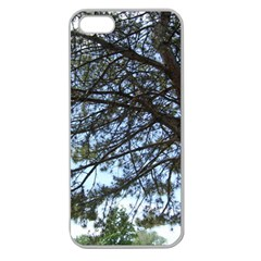 Pine Tree Reaching Apple Seamless iPhone 5 Case (Clear)