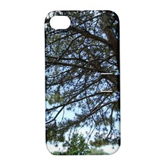 Pine Tree Reaching Apple iPhone 4/4S Hardshell Case with Stand