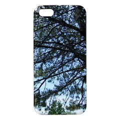 Pine Tree Reaching iPhone 5S/ SE Premium Hardshell Case