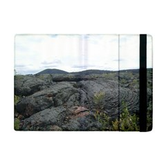 Pillow Lava Ipad Mini 2 Flip Cases