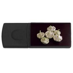 Pattypans  USB Flash Drive Rectangular (4 GB)
