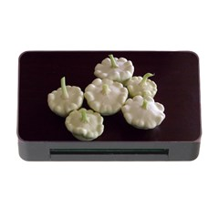 Pattypans  Memory Card Reader With Cf
