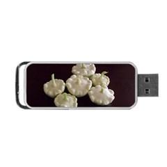 Pattypans  Portable USB Flash (Two Sides)
