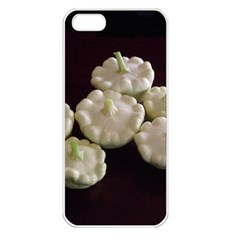 Pattypans  Apple iPhone 5 Seamless Case (White)
