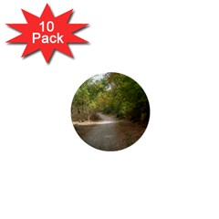 Path 1 1  Mini Buttons (10 pack)