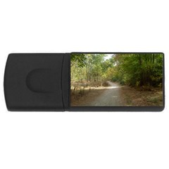 Path 1 USB Flash Drive Rectangular (1 GB)