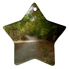 Path 1 Star Ornament (Two Sides)