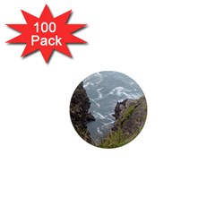 Pacific Ocean 2 1  Mini Magnets (100 pack)