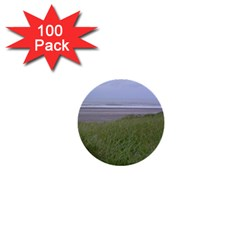 Pacific Ocean  1  Mini Buttons (100 pack)