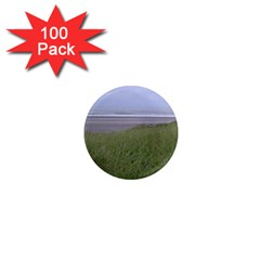 Pacific Ocean  1  Mini Magnets (100 pack)
