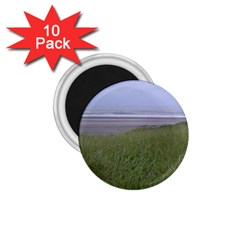 Pacific Ocean  1.75  Magnets (10 pack)