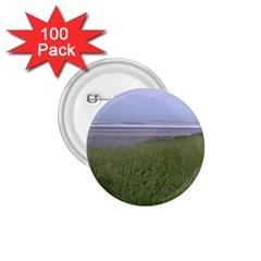 Pacific Ocean  1.75  Buttons (100 pack)