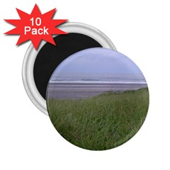 Pacific Ocean  2.25  Magnets (10 pack)