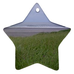 Pacific Ocean  Star Ornament (Two Sides)