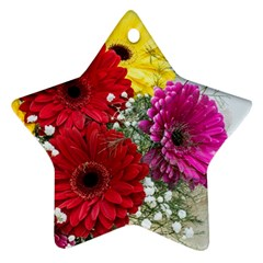 Flowers Gerbera Floral Spring Star Ornament (two Sides)