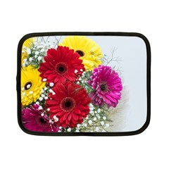 Flowers Gerbera Floral Spring Netbook Case (Small)