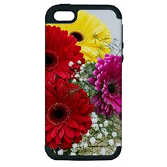 Flowers Gerbera Floral Spring Apple Iphone 5 Hardshell Case (pc+silicone)