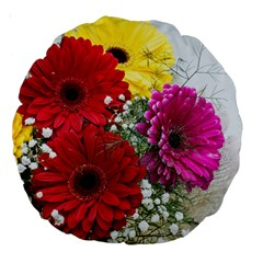 Flowers Gerbera Floral Spring Large 18  Premium Round Cushions