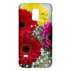 Flowers Gerbera Floral Spring Galaxy S5 Mini