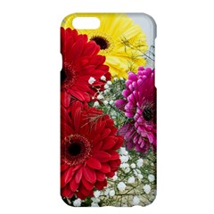 Flowers Gerbera Floral Spring Apple iPhone 6 Plus/6S Plus Hardshell Case