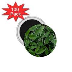 Texture Leaves Light Sun Green 1.75  Magnets (100 pack)