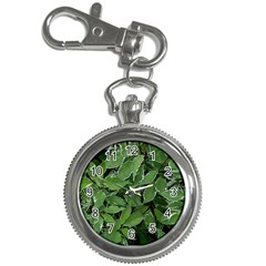 Texture Leaves Light Sun Green Key Chain Watches