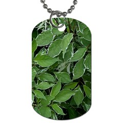 Texture Leaves Light Sun Green Dog Tag (two Sides)