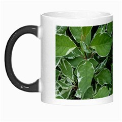 Texture Leaves Light Sun Green Morph Mugs