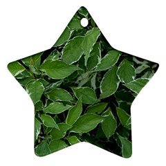 Texture Leaves Light Sun Green Star Ornament (Two Sides)