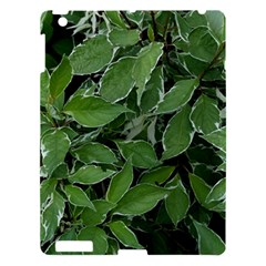 Texture Leaves Light Sun Green Apple Ipad 3/4 Hardshell Case