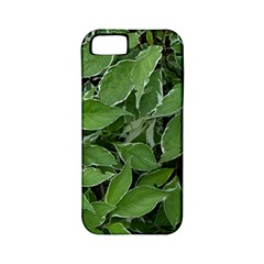 Texture Leaves Light Sun Green Apple Iphone 5 Classic Hardshell Case (pc+silicone)