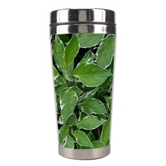 Texture Leaves Light Sun Green Stainless Steel Travel Tumblers
