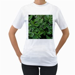 Texture Leaves Light Sun Green Women s T-Shirt (White)