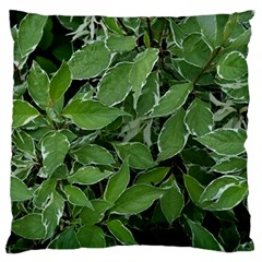 Texture Leaves Light Sun Green Standard Flano Cushion Case (Two Sides)