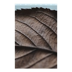 Leaf Veins Nerves Macro Closeup Shower Curtain 48  x 72  (Small)